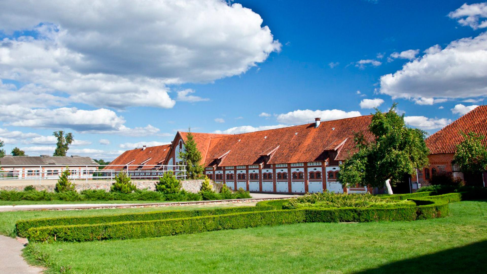 Экскурсия необычная в Черняховск и Советск «Рыцарские замки Восточной Пруссии»